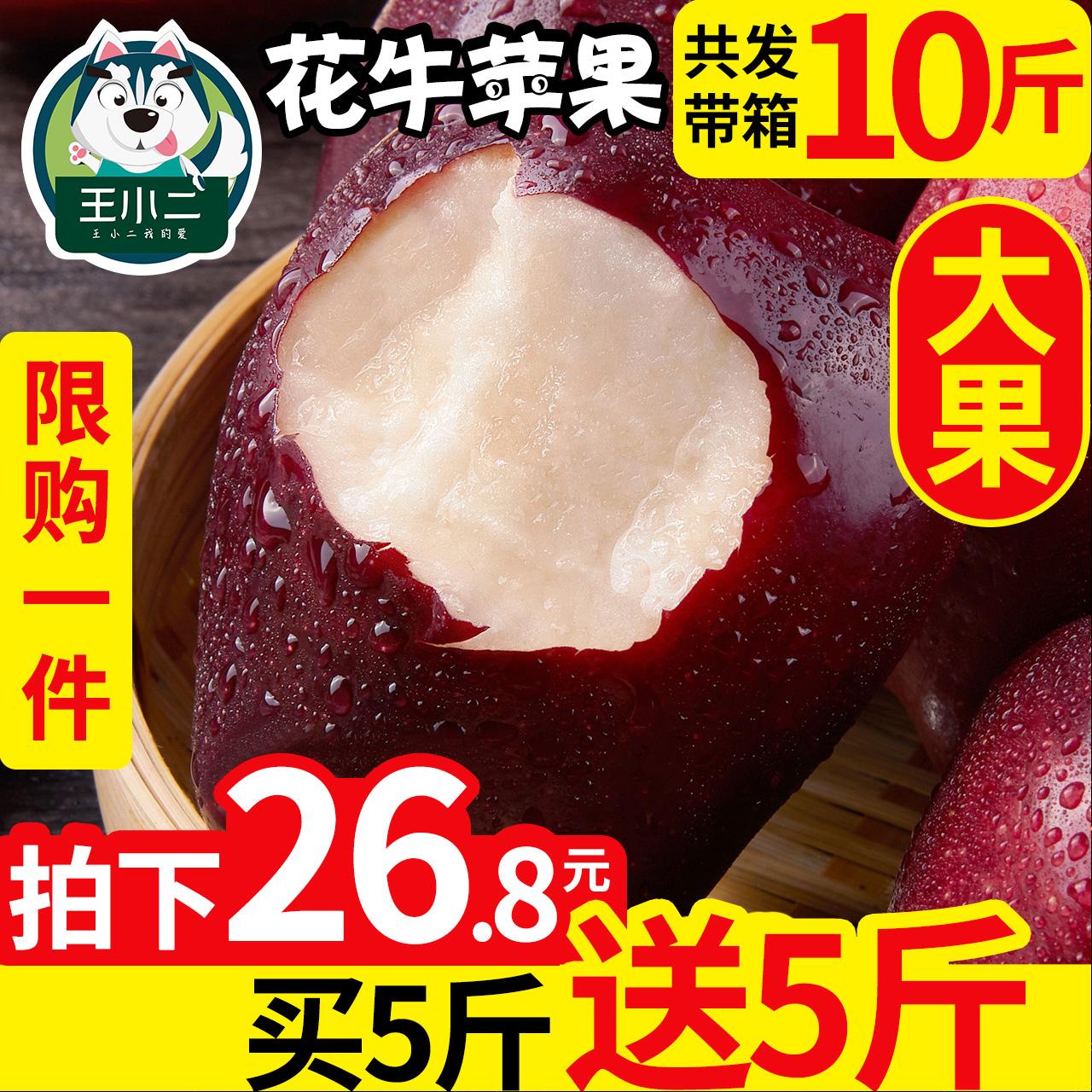 买1送1 甘肃天水花牛苹果当季水果新鲜包邮蛇果平果带箱10斤