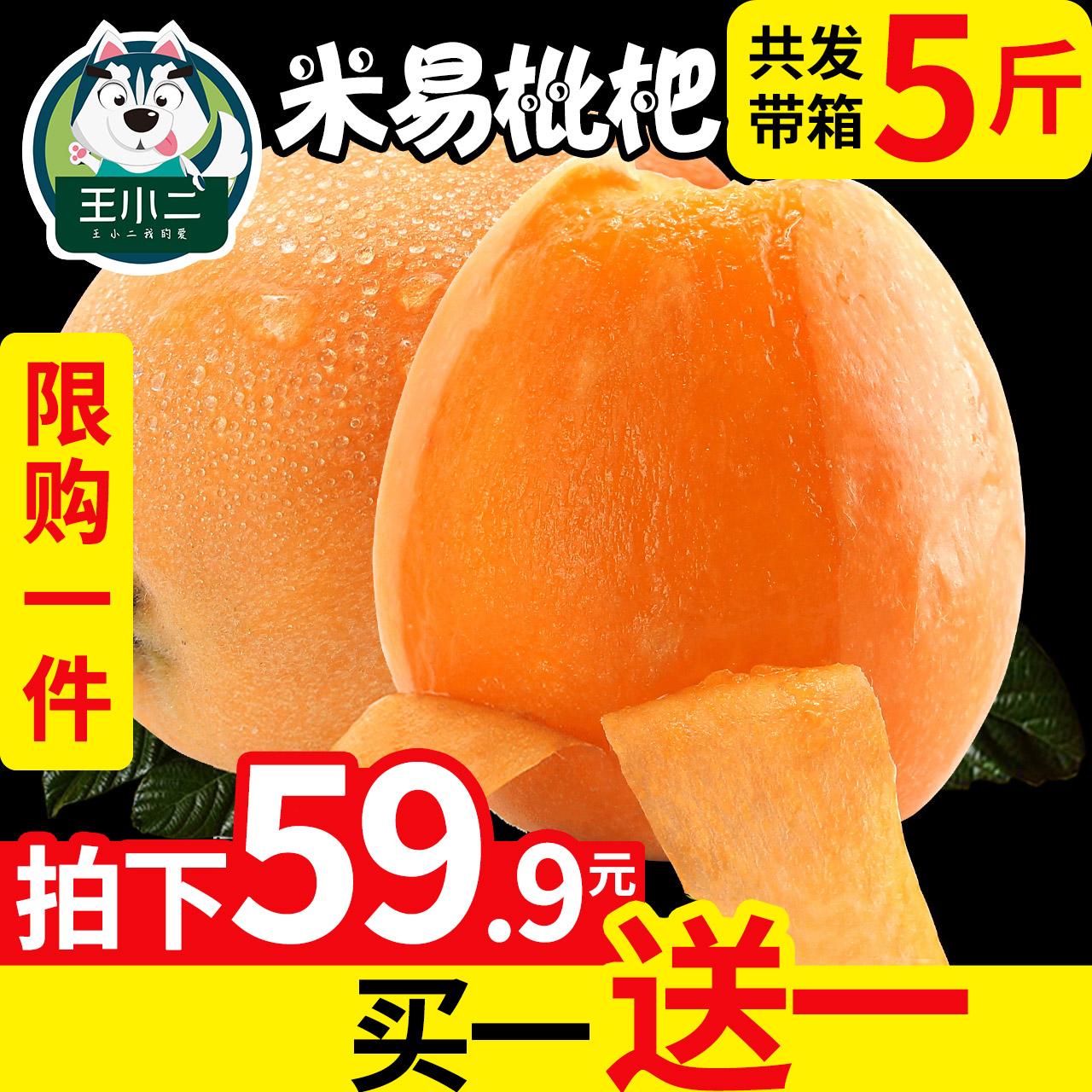 【买1送1】攀枝花米易枇杷果琵琶白水果新鲜大10包邮当季带箱5斤