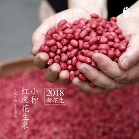 山料野食红皮花生米生18年新货小粒红衣花生仁农家自产500g包邮