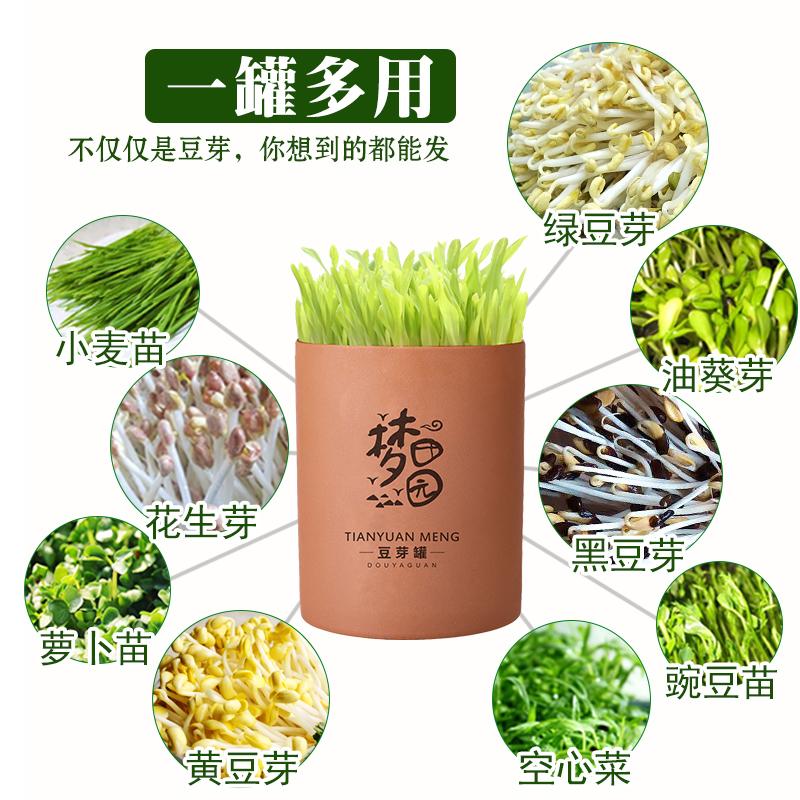 土陶豆芽罐带麦饭石发豆芽机家用全自动生花生芽黄豆绿豆芽 苗菜