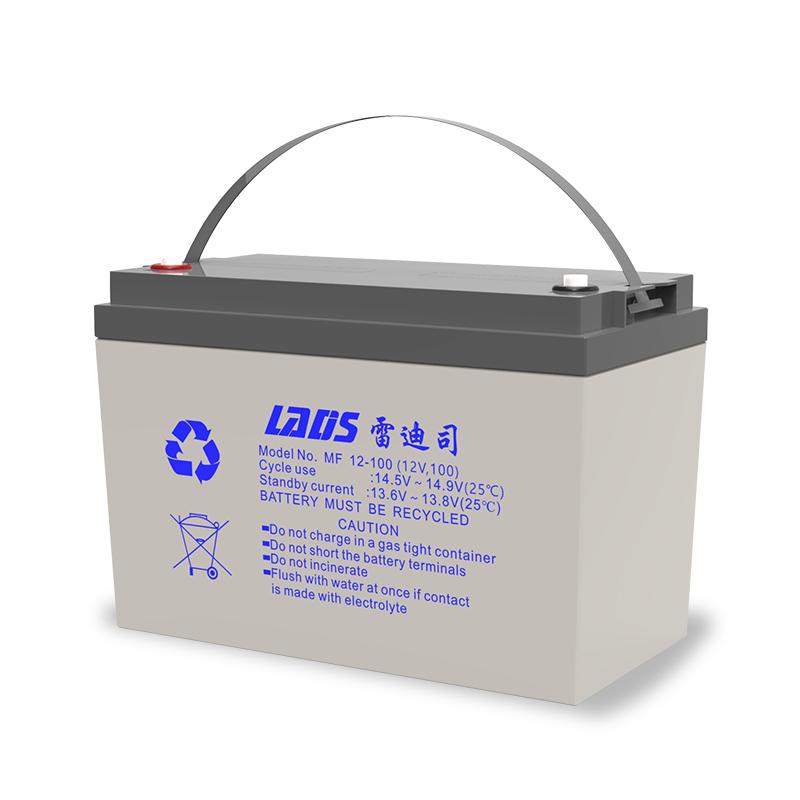 雷迪司1KVA 8小时在线式UPS不间断电源800W配置100AH电池6只G1KL