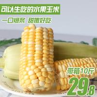【现摘现发】云南水果玉米带箱10斤新鲜应季甜玉米棒生吃蔬菜包邮
