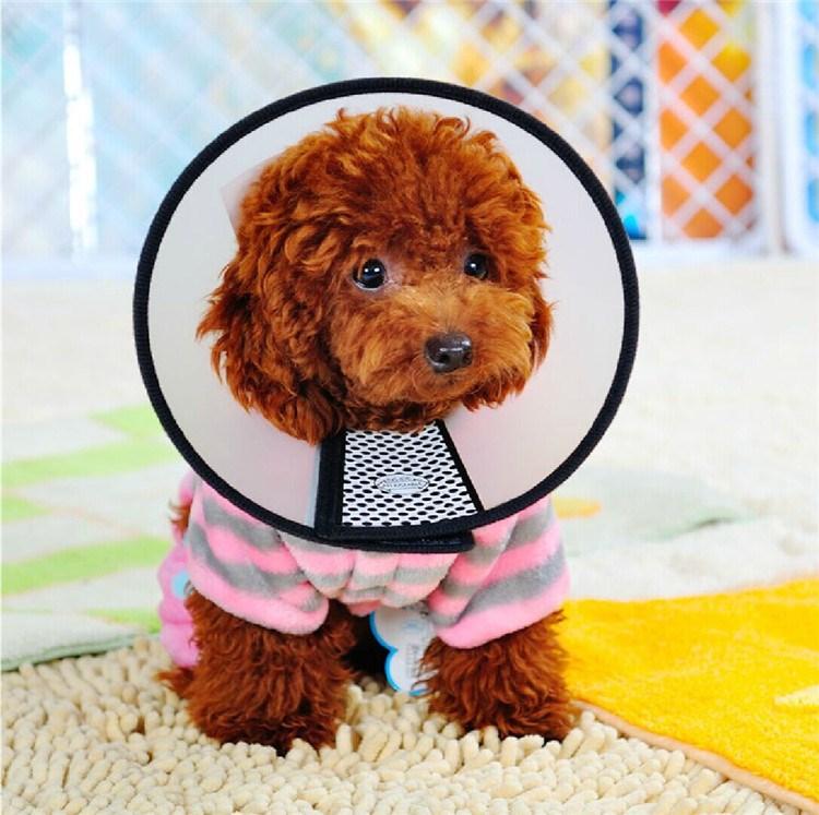 Лекарственные препараты для кошек и собак Артикул 594226720949