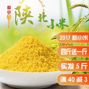 2017新鲜陕北特产米脂月子米谷物杂粮油黄小米粥农家自产5斤包邮
