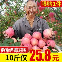 萍果 包邮 苹果水果当季新鲜水果红富士冰糖心整箱现摘苹果10斤批发