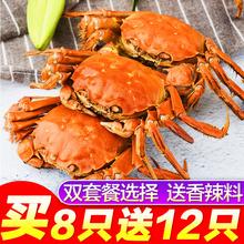 【共20只】现货螃蟹鲜活大闸蟹阳澄湖六月黄新鲜全母公1.6-1.9两