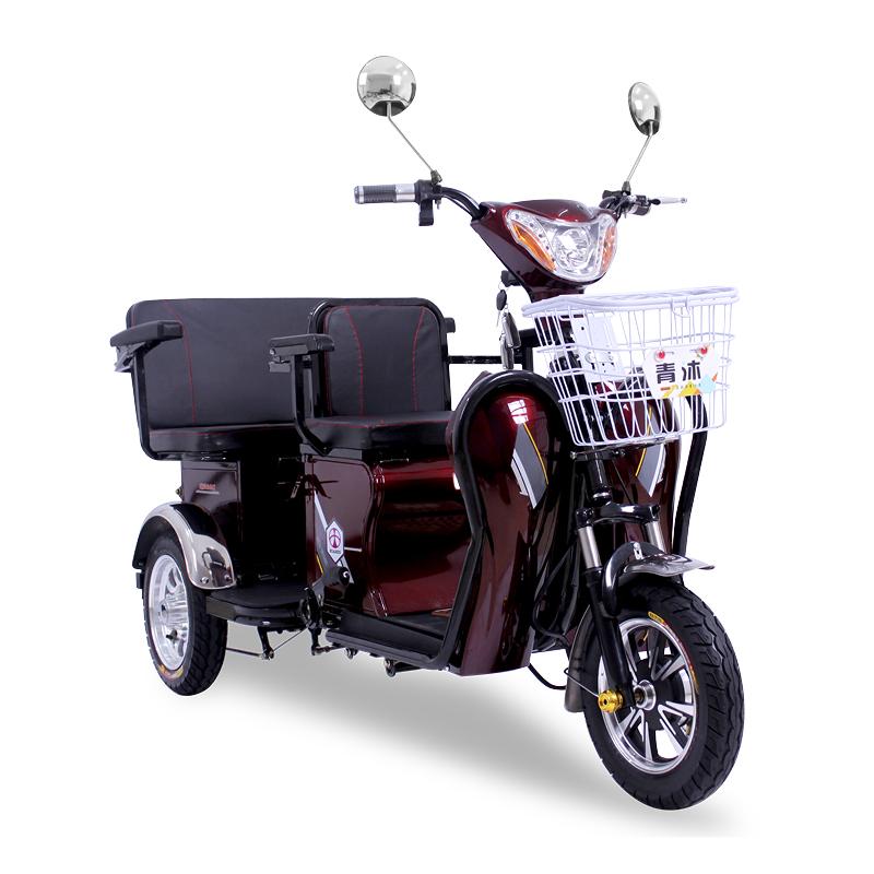 电动三轮车双人新款接送孩子残疾人老人成人电瓶车迷你型老年家用