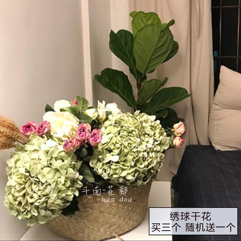 Высушенные цветы Артикул 547376978553