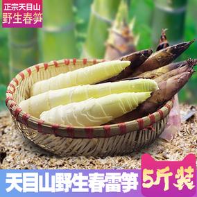临安天目山雷笋5斤 高山野生春笋新鲜现挖小竹笋 油焖笋 蔬菜冬笋