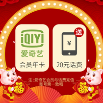 (Echo + 20 Yuan phone bill) value Echo Gold member VIP annual card 12 months to 20 yuan call fee