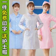 女冬装 学生医院工作服套装 粉色白大褂短袖 娃娃领修身 护士服长袖