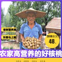 老街口焦糖/山核桃味瓜子500g*4袋葵花籽坚果炒货零食品特产批发