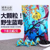 蓝莓干野生无添加大粒纯天然新鲜零食东北长白山特产蓝莓果干500g