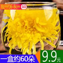朵铁罐装50金丝皇菊一朵一杯大黄菊特级新婺源清热去火大菊花草茶