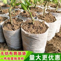 Biodegradable non-woven pots direct marketing thickened nursery bags nutrition Cup citrus fruit container Bowl tree planting bags custom