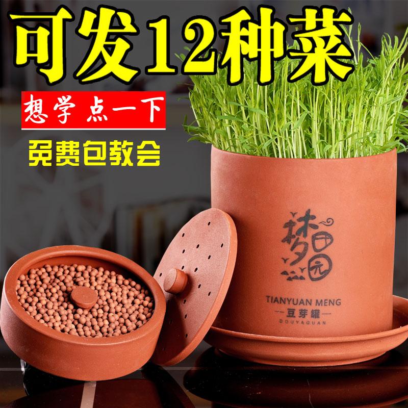 土陶豆芽罐大容量花生芽发豆芽缸 豆芽机 家用全自动 原生态