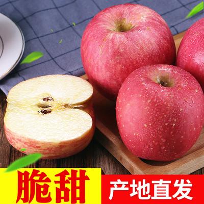 脆甜 烟台苹果栖霞红富士山东农家当季新鲜水果批发一整箱包邮