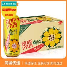 维他菊花茶500ml*24瓶整箱菊花植物饮料 维他奶出品茶多省包邮