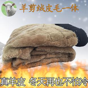 冬季保暖加厚东北棉裤 羊剪绒村羊毛内胆裤 中老年皮毛一体男女皮裤
