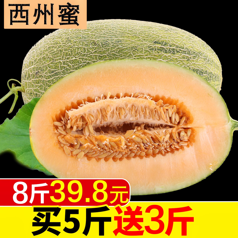 新疆哈密瓜 西州蜜瓜 新鲜水果8斤2-4只装包邮当季甘肃丝路晓密瓜