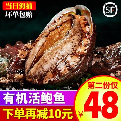 壹鲜鲍鱼鲜活大个特大12-15头大连海鲜即食特产贝类水产500g包邮