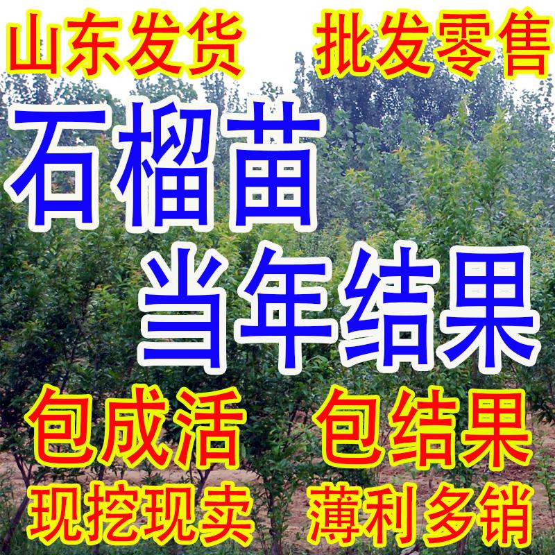【18.2.5值得买】福利,淘宝天猫白菜价商品汇总