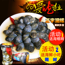 A large drunken mud snail canned raw edible pickled seafood beidon the mud-free yellow mud snail spit iron of the port