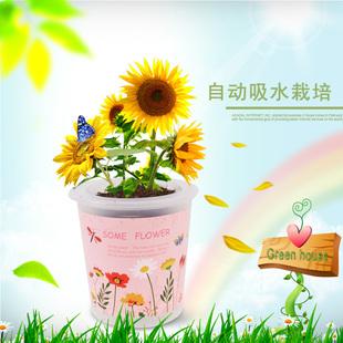 自动吸水diy儿童种植创意可爱迷你植物开心农场桌面小盆栽微景观