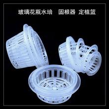 圆球圆形圆柱鱼缸花瓶定植篮水培植物筐定植盒绿萝固定容器固根器