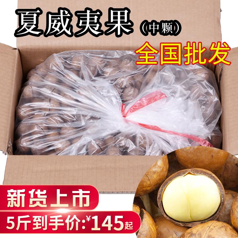 新货夏威夷果5斤散装奶油味 整箱坚果年货夏果送开口器干果炒货
