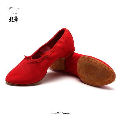 北舞帆布教师鞋低跟芭蕾舞鞋大底民族舞爵士鞋肚皮舞鞋体操鞋男女
