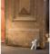德国PHILIPPI创意门档 门挡 门阻门防撞不锈钢橡胶免安装免打孔