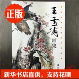 写意花卉鸟类草虫禽鸟等中国近现代著名花鸟画家国画王雪涛画集