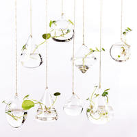 Creative hanging transparent glass vase small bottle water flower garden indoor gardening home decoration bottle plant set