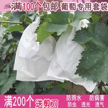 葡萄袋子防虫袋露天葡萄套袋果袋专用套袋防水套葡萄用纸袋育果袋