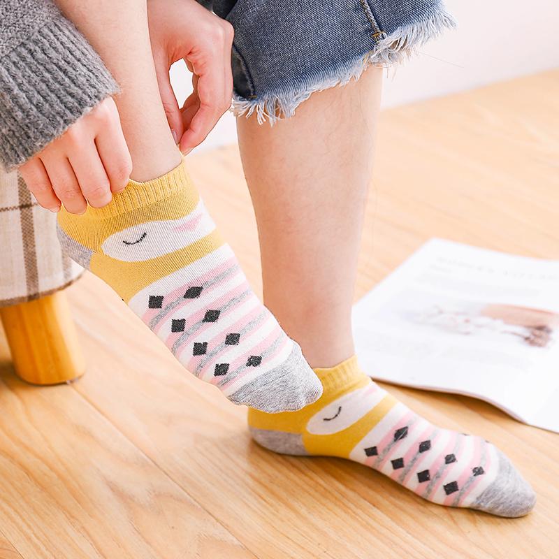 小动物短袜子