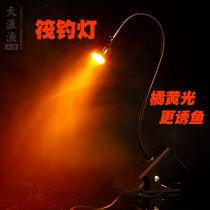 超亮强光手电筒双光源落地氙气灯夜光台钓1000W夜钓灯蓝光钓鱼灯