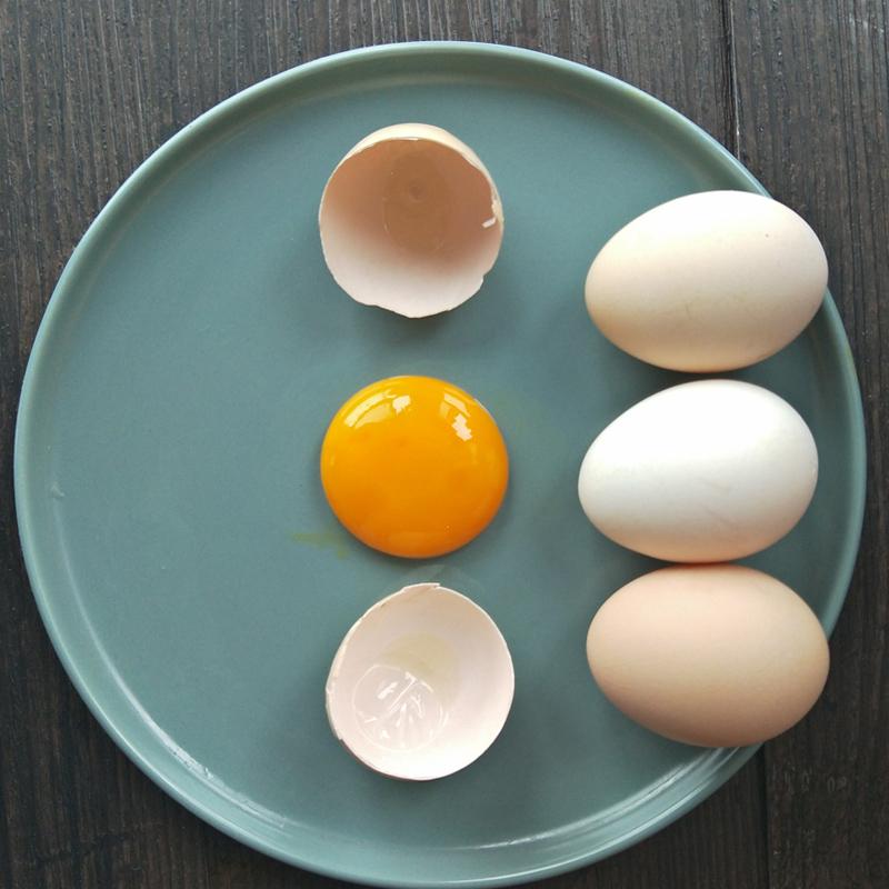 正宗柴土鸡蛋农家散养新鲜实发30枚个农村自养纯自家放养笨草月