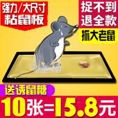 夹鼠板口型杀鼠剂神器平放强力粘鼠板家用强力胶老鼠笼捕鼠笼