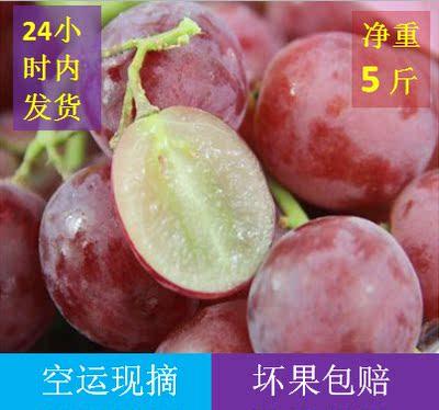 红提子葡萄新鲜水果5斤包邮现货现摘现发整箱非10斤无籽核青提