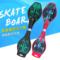 儿童二轮滑板车成人青少年两轮闪光轮摇摆滑板初学者活力板游板