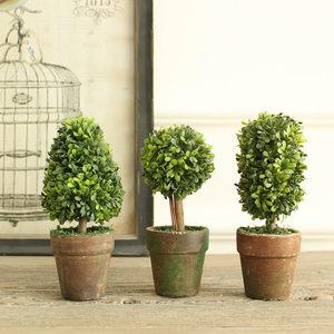 米子家居 清新田园风仿真植物书房客厅桌面摆件 埃蒙德盆栽三件套
