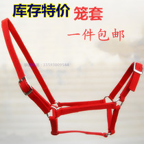 Crazy grab popular special horse bridle Maronto tied bridle to teach horse cage sleeve