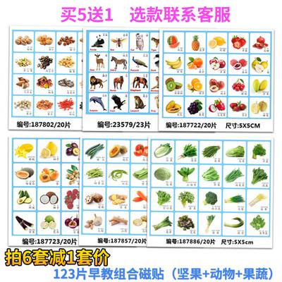 水果动物蔬菜坚果果仁磁贴识物冰箱贴启蒙早教认物卡片学习卡