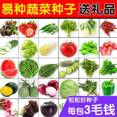 【天天特价】蔬菜种子套餐阳台种菜盆栽四季播花种子易种水果草莓