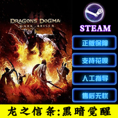 Dark 黑暗觉醒 龙之信条 Arisen 崛起Dragon Dogma PC正版Steam
