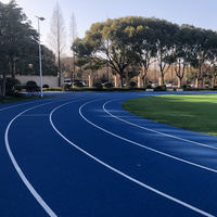 Outdoor EPDM pellets Track and field rubber mats Basketball courts, badminton courts, tennis courts