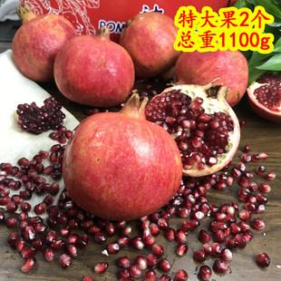 现货新鲜石榴2个超大果软籽新鲜红石榴酸甜时令孕妇水果发顺丰