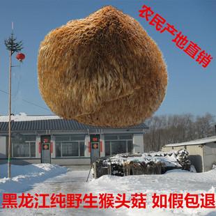 农家 东北野生猴头菇养胃 可打粉 东北特产兴安岭野生猴头菇干货