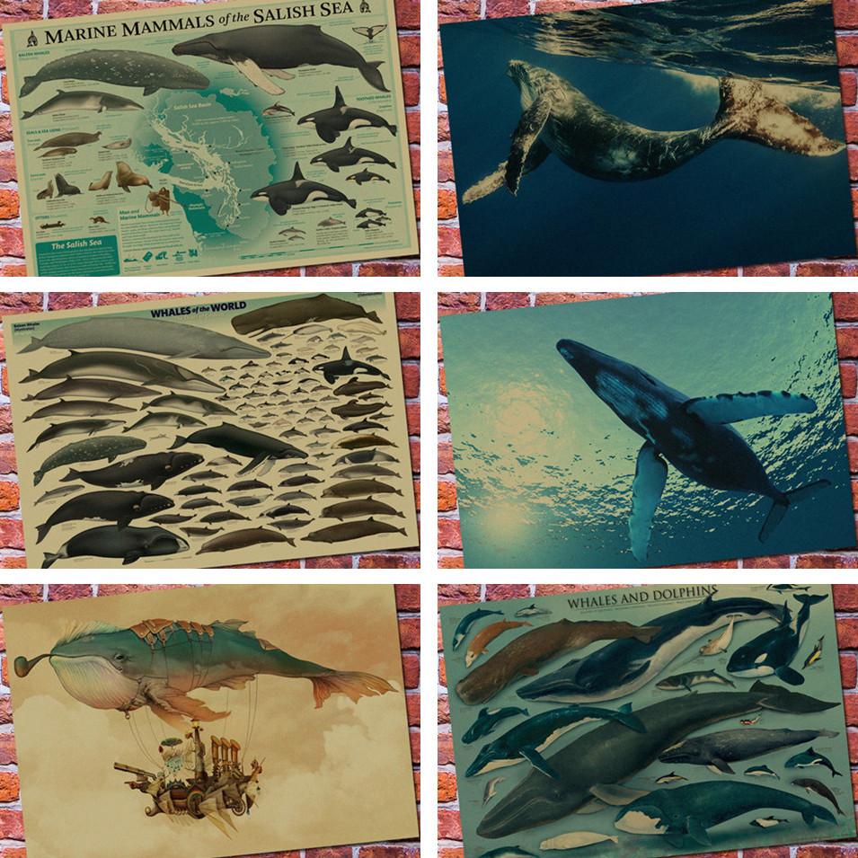 海洋生物掛畫